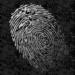Fingerprint Killer