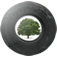 Trees for Cars logo